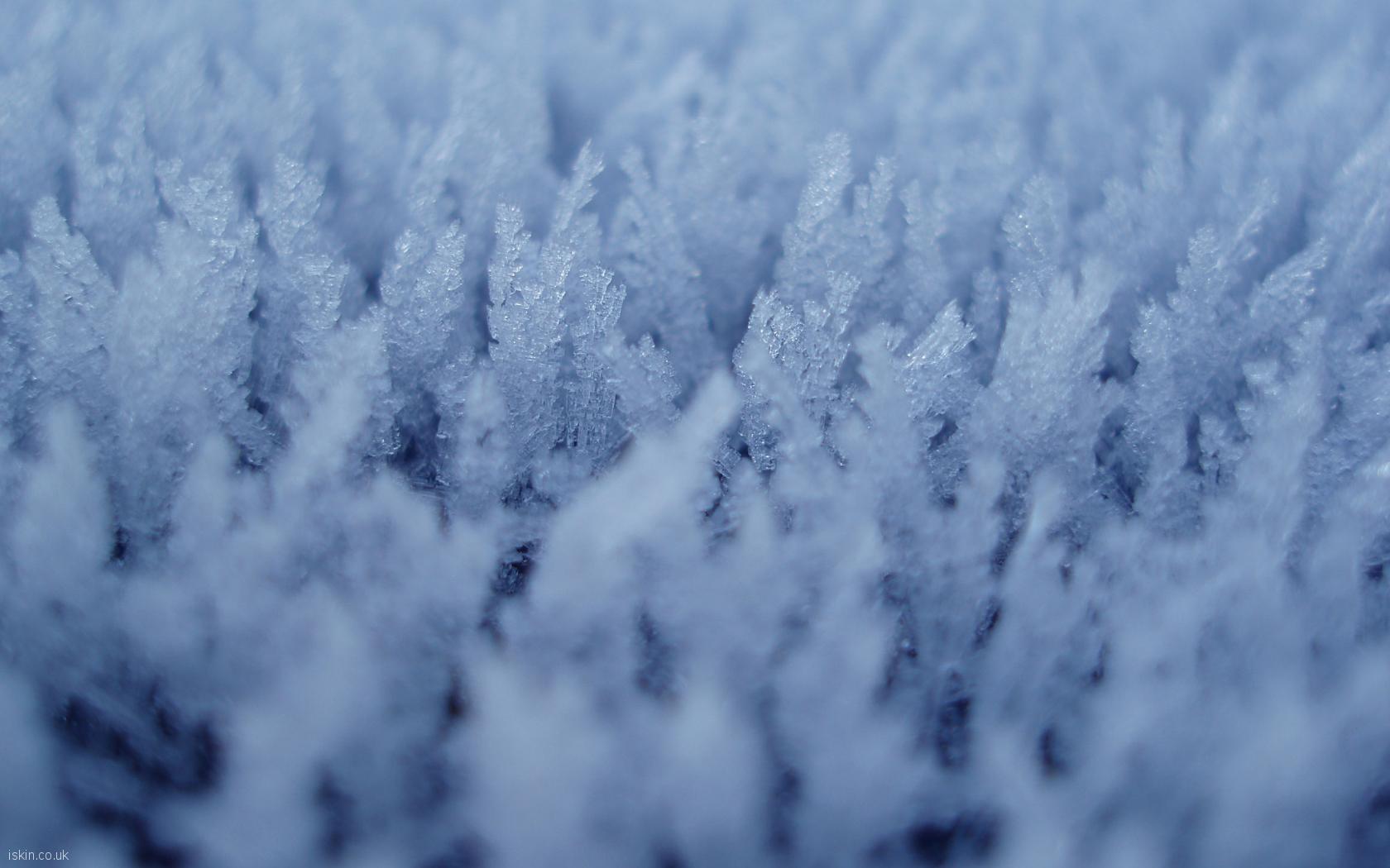 ice_fern_crystals.jpg